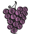 fruit_grapes_02