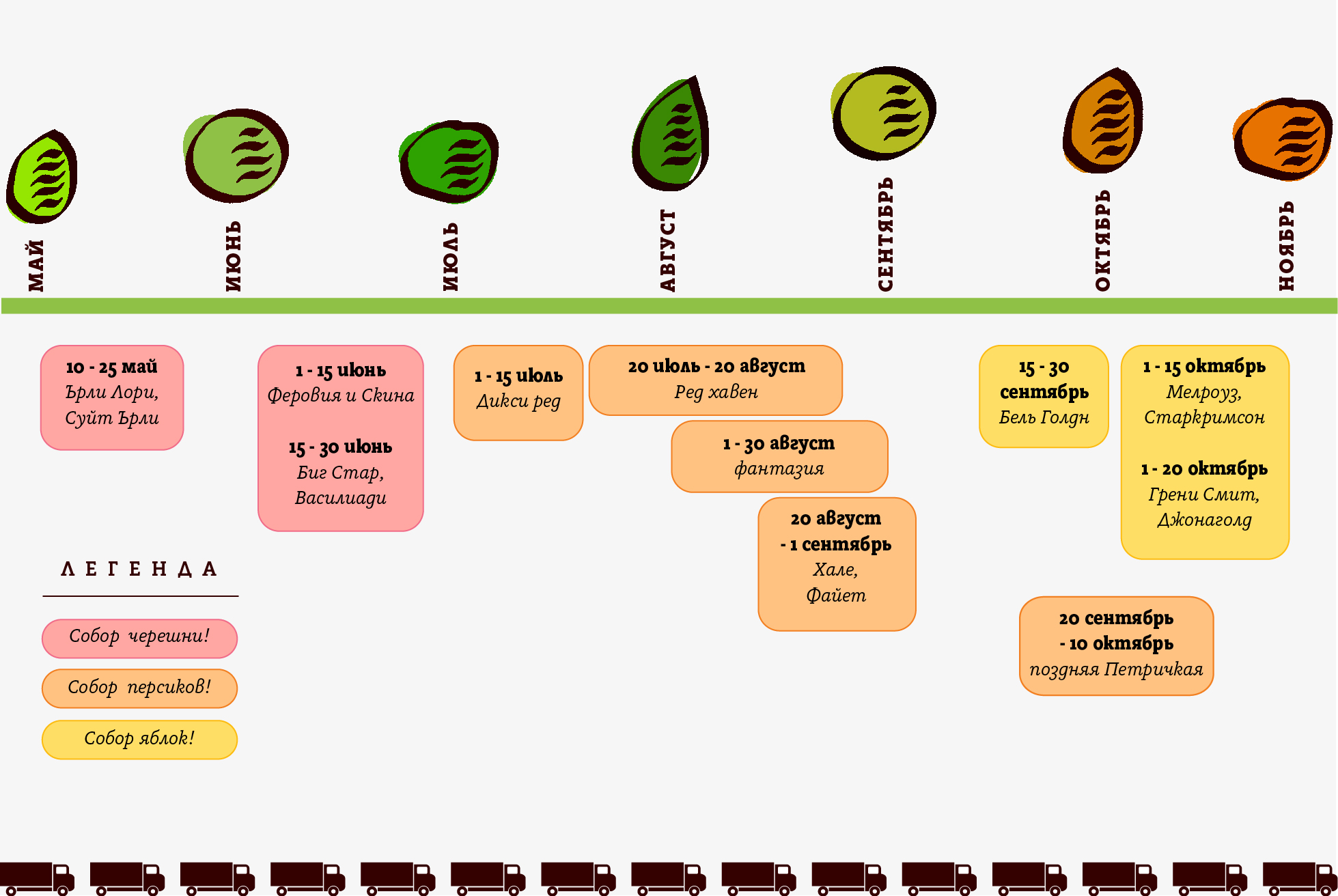 Fruits_time line3_RU